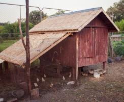 Comment construire un poulailler en bois ?